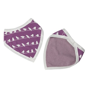 Orga Bibs-birds-raspberry