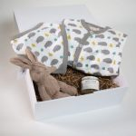 Hedgehog baby hamper