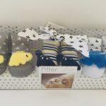 Dinosaurs socks box